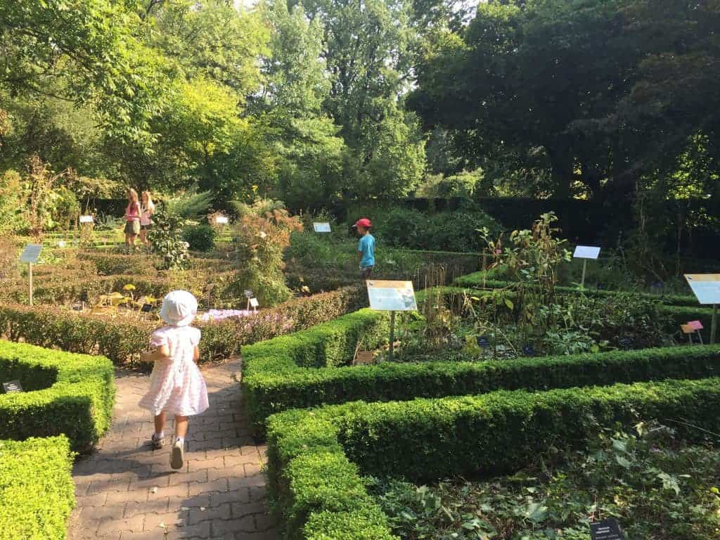 University of Warsaw Botanic Garden with children, attractions for kids, education paths