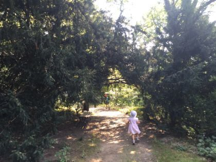 University of Warsaw Botanic Garden with children, attractions for kids, paths in the summer time
