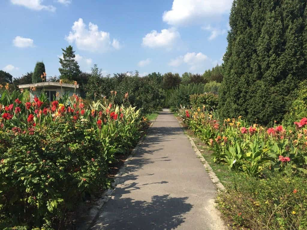 Botanical Garden of the Polish Academy of Sciences in Powsin with children, attractions for kids, flowers
