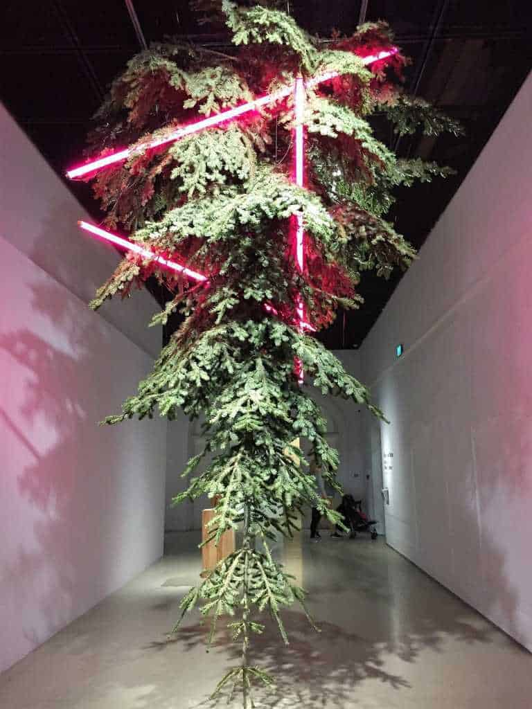 Center for Contemporary Art – Ujazdowski Castle in Warsaw - attractions for kids - Christmas tree