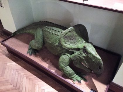 Natural History Museum (Museum of Evolution) in Warsaw - attractions for kids