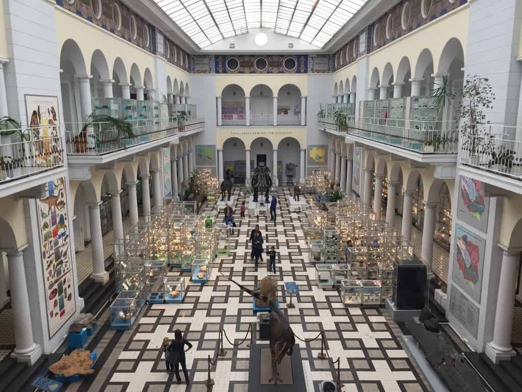 Geological Museum in Warsaw