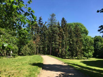 Skaryszewski Park