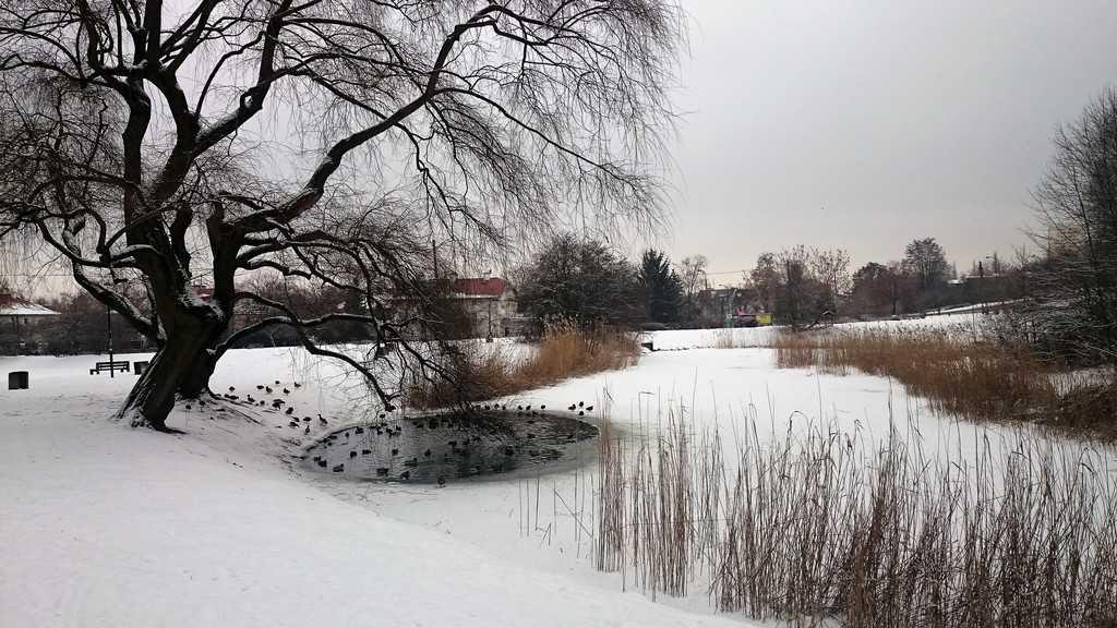 Królikarnia and Arkadia parks in Warsaw