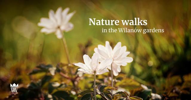 Wilanow Warsaw Poland, educational walk in English