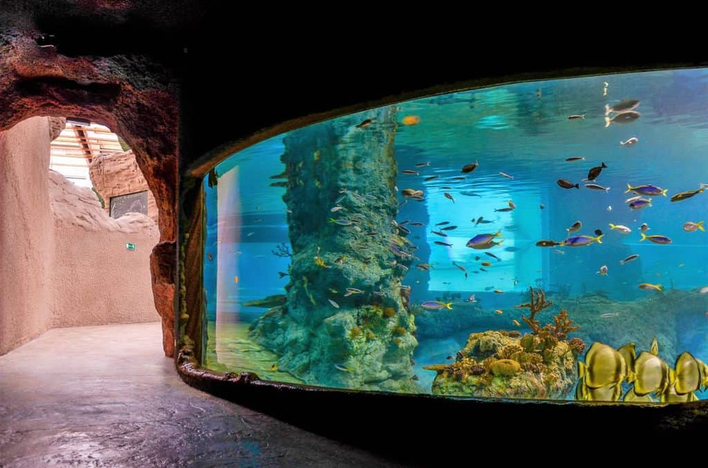 Zoo and Oceanarium in Wroclaw