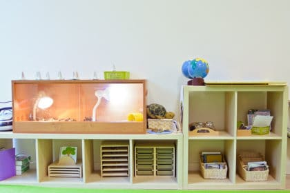 House of Montessori bilingual preschool in Warsaw Poland