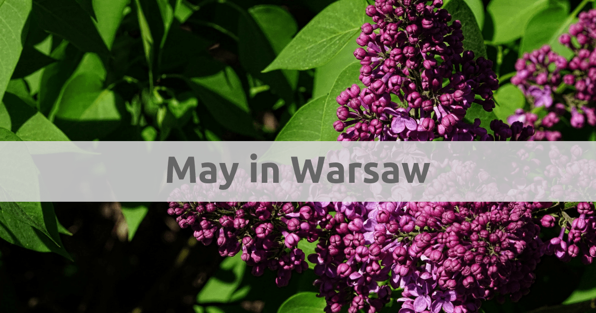 Things to do in Warsaw in May