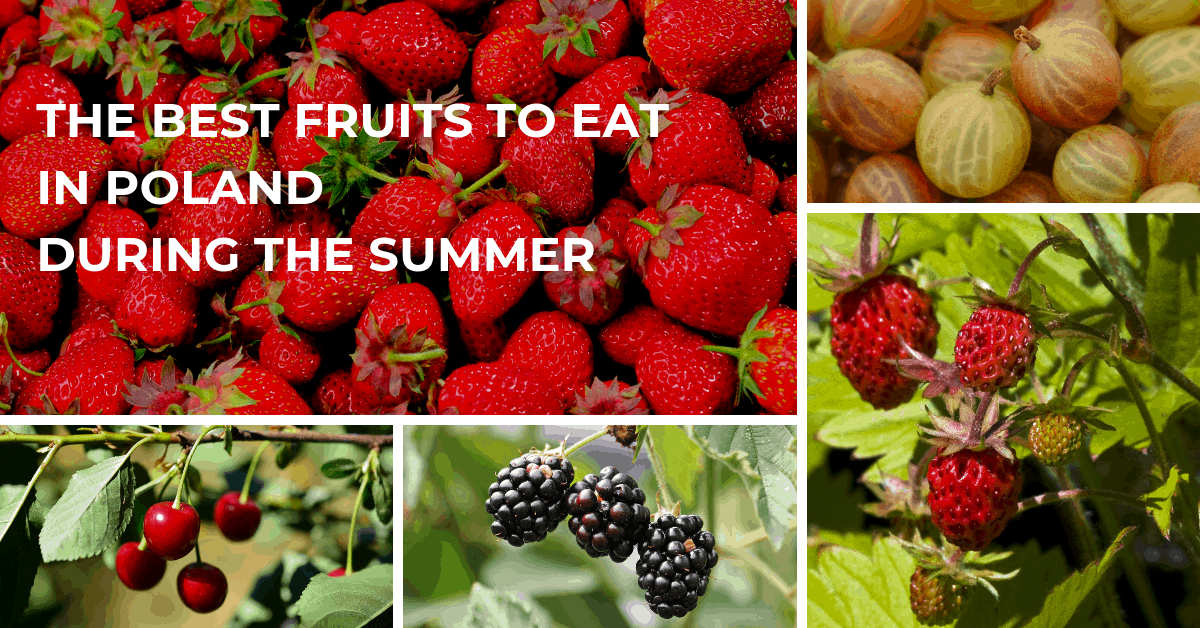 Summer fruits in Poland