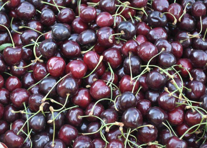 cherries-863046_1920
