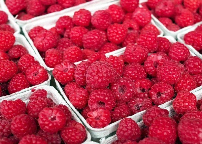 raspberry-1465988_1920