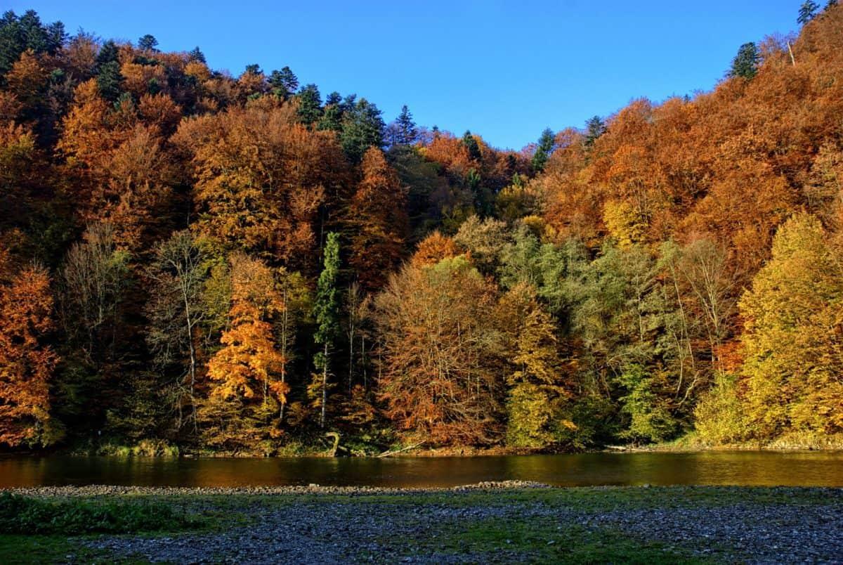 Autumn in Poland: time change, 2 public holidays, 3 shopping Sundays, observances, and celebrations
