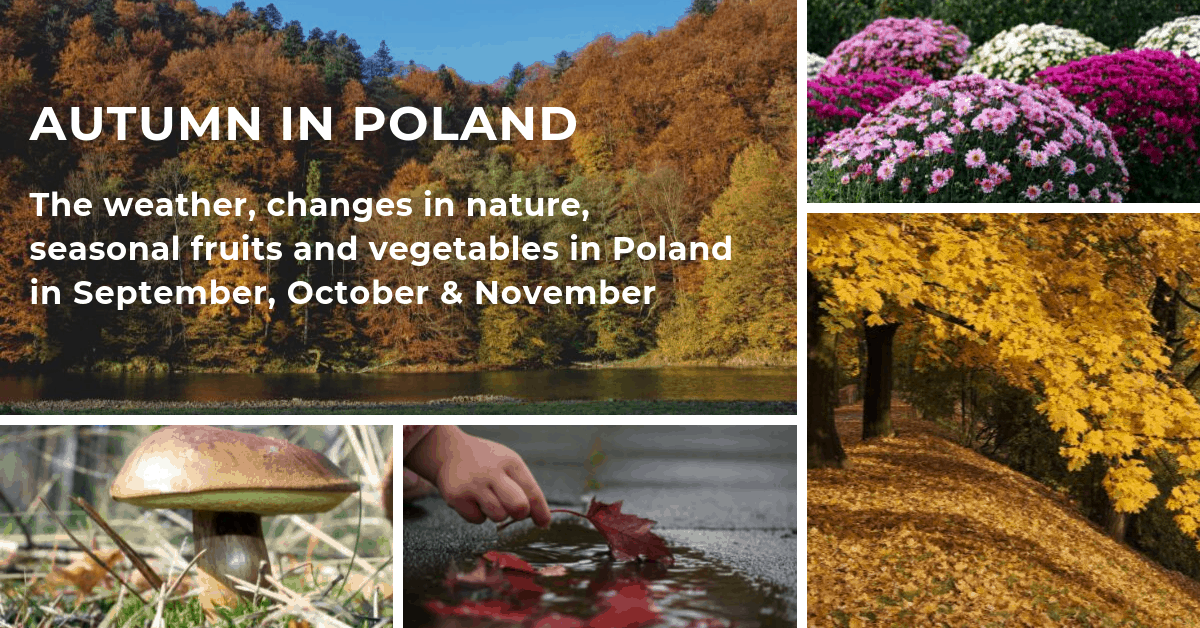 Autumn in Poland