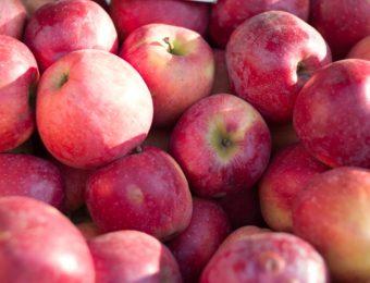 apples-1285236_1920