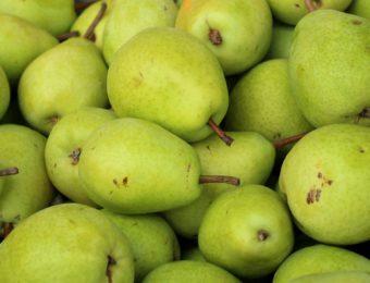 pears-4055660_1920