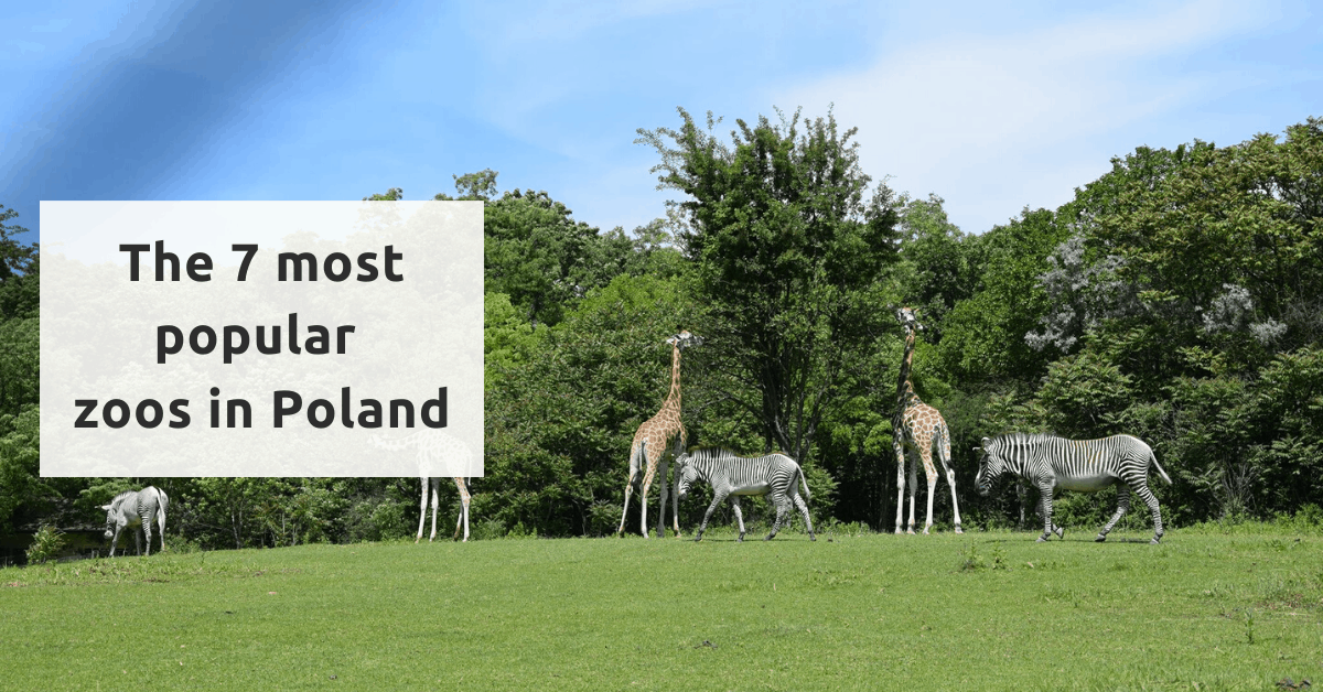 7 most popular zoos in Poland