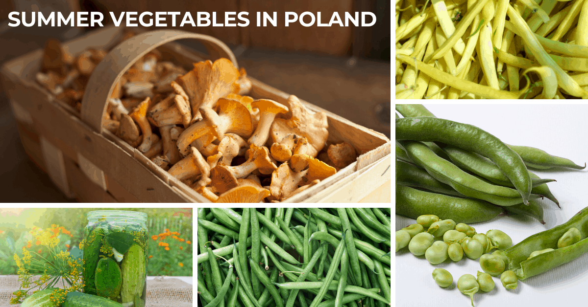 summer vegetables in Poland