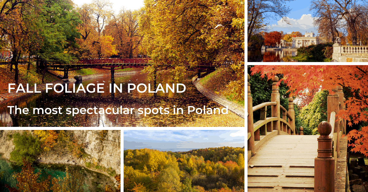 fall foliage spots in Poland
